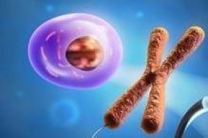 La Biologie humaine et ses applications